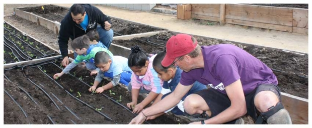 Harvesting for Families at El Cariso