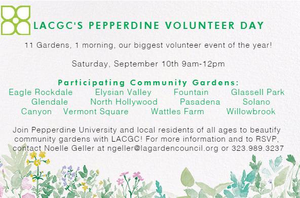 LACGC's Pepperdine Volunteer Day