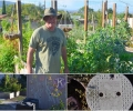 Meet Monterey Road Eco-Community Gardens