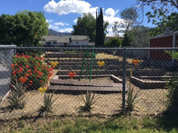 Build Day- Hermosa Beach Community Garden