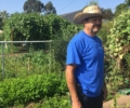Meet Don Francisco at the Stanford Avalon Community Garden